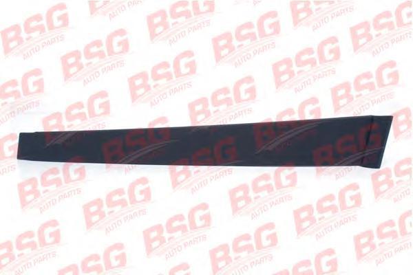 BSG30925005 BSG Облицовка / защитная накладка, стекло двери