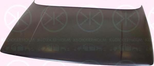2025280 KLOKKERHOLM Капот двигателя