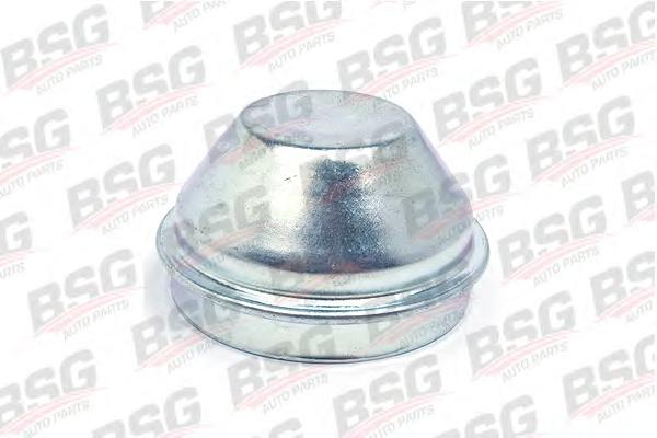 BSG30971003 BSG Крышка / защитный колпак