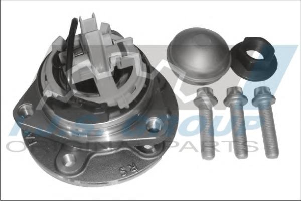 Комплект подшипника ступицы колеса IJS 101453