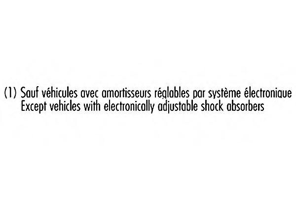 003948 RECORD FRANCE 3948_амортизатор задний масляный
