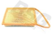 BSG70135009 BSG Фильтр - воздушный